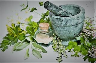 الأعشاب الطبية فترة العلاج