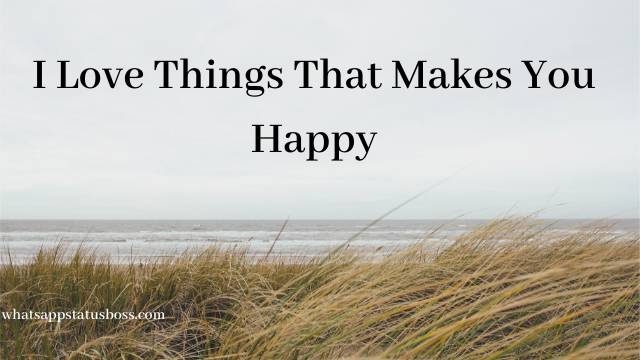 I Love Things That Makes You Happy