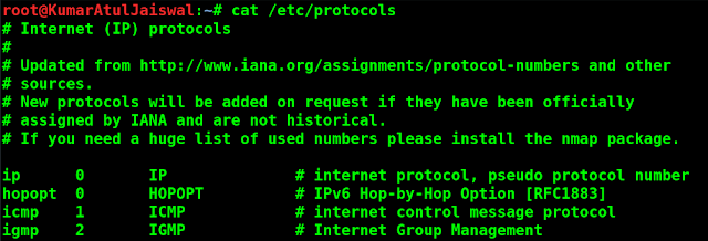 10 Basic Cat Command Examples in Linux
