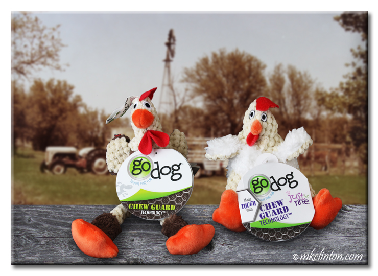 Two GoDog Roosters from GoDog™ with farm in background