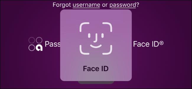 وجه معرف يطالب لتطبيق المصرفية عبر الإنترنت على iPhone.
