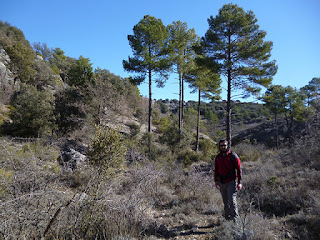 Arroyo de Valpinoso