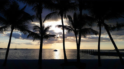 Fishing boat and coconut trees silhouettes at sunrise