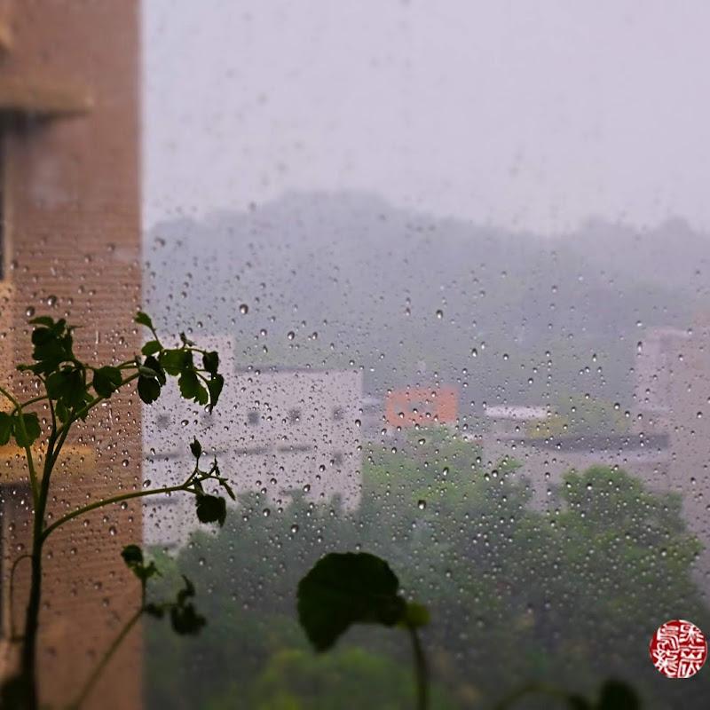愛風愛雨嘈雜的寧靜日