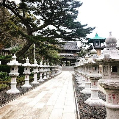 お礼参りに行ったら、新屋山神社でまたまた大吉!