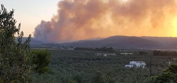 Nuovi roghi in Puglia: fiamme a Peschici