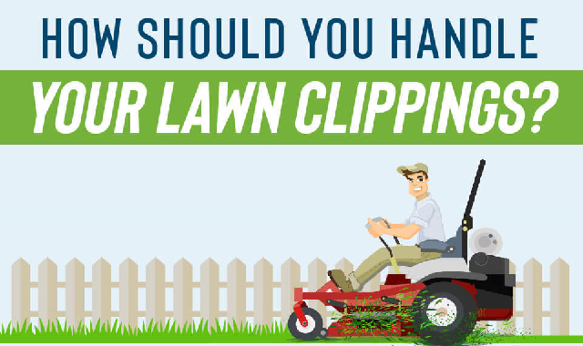 How Should You Handle Your Lawn Clippings? #infographic