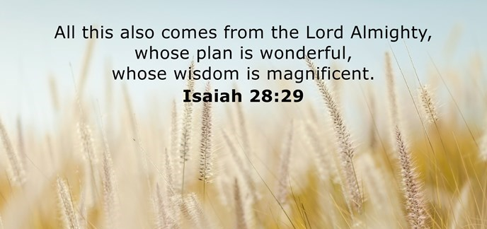 All this also comes from the Lord Almighty, whose plan is wonderful, whose wisdom is magnificent.