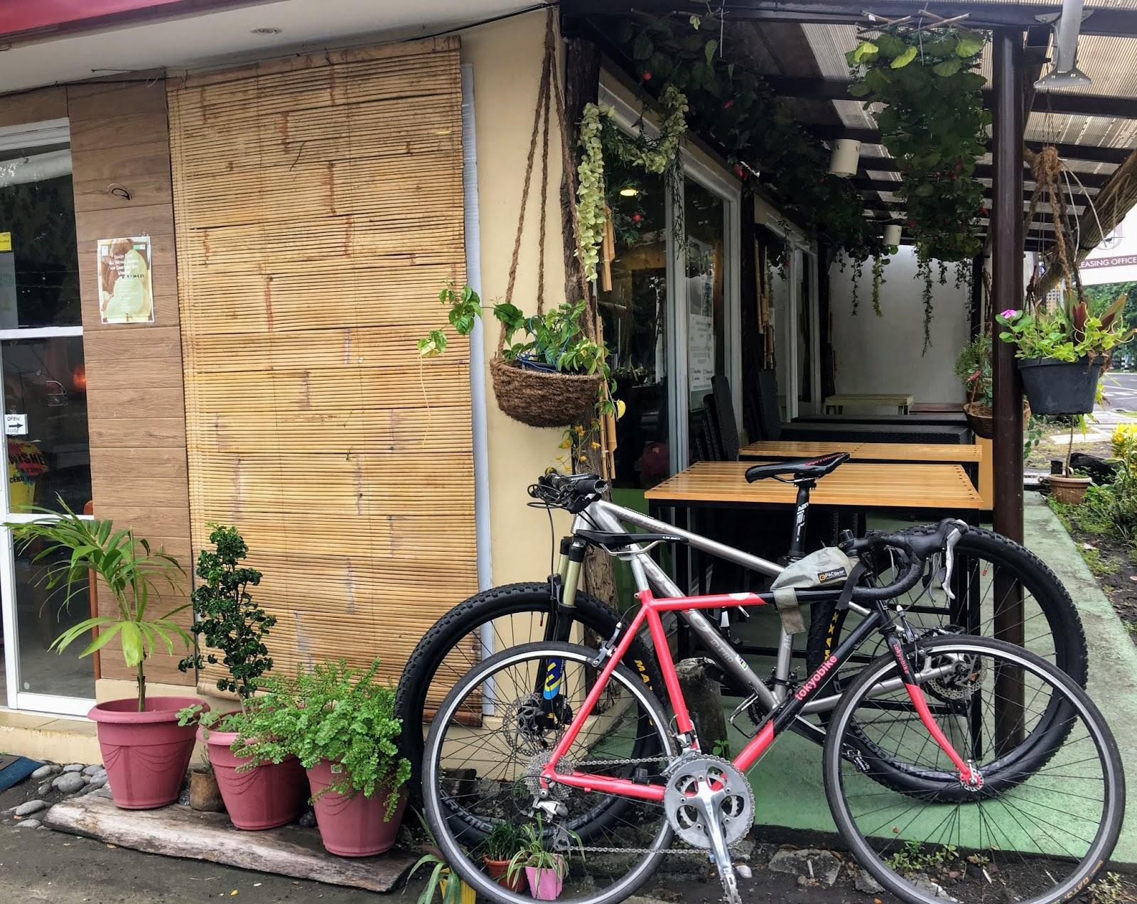 vegetarian restaurant in legazpi albay