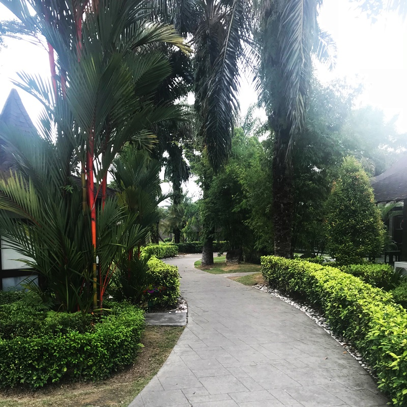 best staycation, Chinese restaurant in Cyberjaya, Cyberview Resort and Spa, hotel with bathtub, Rawlins GLAM, Staycation, The best resort in Putrajaya and Cyberjaya,