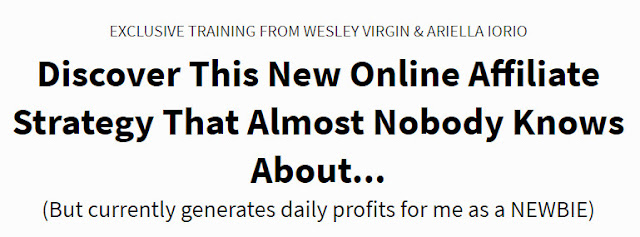 Done For You Services System #1 Offer! Wesley And Ari's Offer - EXCLUSIVE TRAINING FROM WESLEY VIRGIN & ARIELLA IORIO