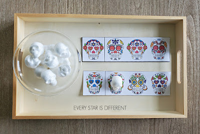 Day of the Dead Which Skull is the Same? Activity