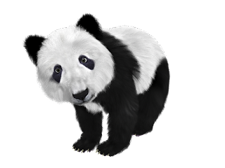 contoh descriptive text tentang hewan panda beserta artinya