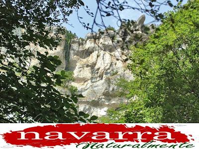 173 Datos Ocupación Turismo Navarra Septiembre 2016 -  www.casaruralurbasa.com