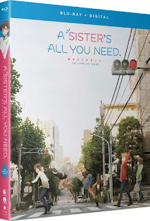 A Sister's All You Need – Miniserie [2xBD25] *Subtitulada