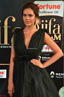 Esha Gupta in a Deep Neck Sleeveless Dark Green Gown at IIFA Utsavam Awards 2017     13.JPG