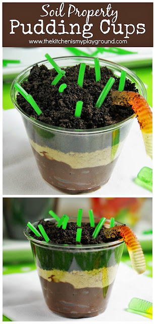 Soil Property Pudding Cups {aka Dirt Pudding Cups} ~ A fun & delicious way to learn and remember the four soil types. Such an easy hands-on activity for the kiddos to do!  www.thekitchenismyplayground.com