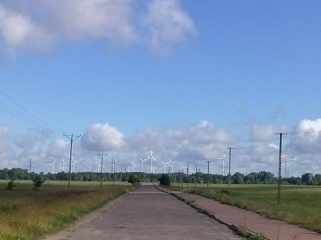 zdjęcie  przedstawiający drogę