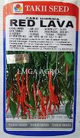 lmga agro,benih,bibit, cabe keriting, cabe merah keriting, red lava, harga murah, takii