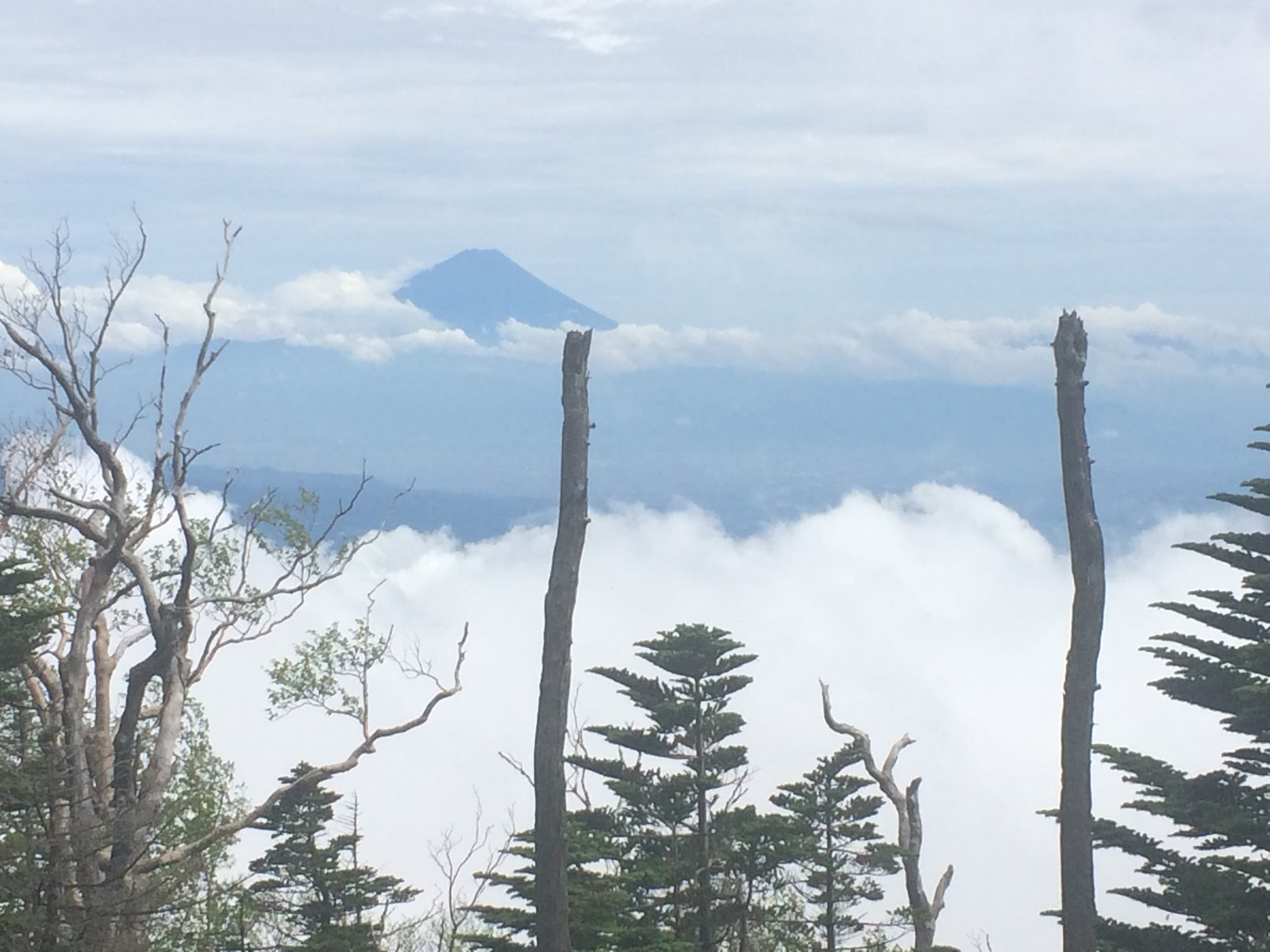 権現岳 富士山