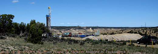 Dudley Bluffs Bladderpod and Twinpod Habitat