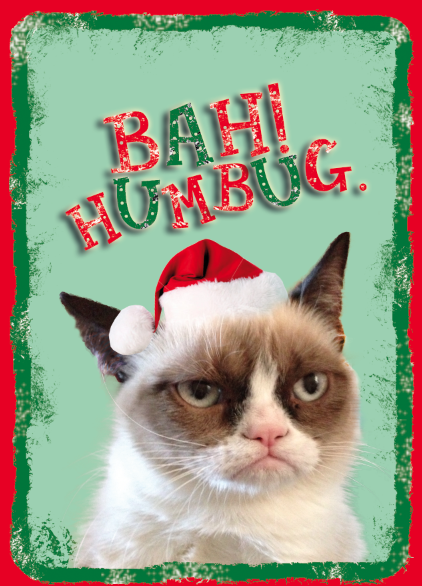 Grumpy Cat Christmas | Funny Collection World