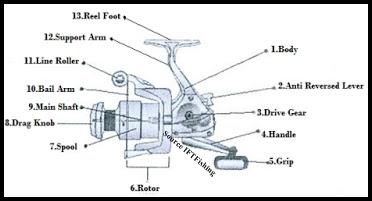 Mengenal Lebih Detail Tentang Spinning Reel