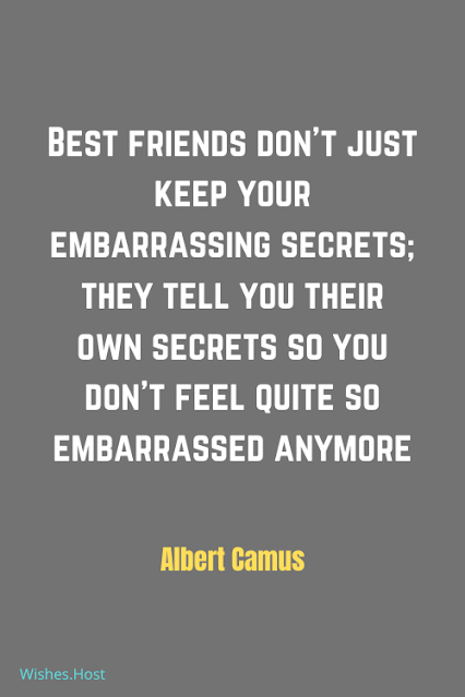 Comfortable Friendship Quotes