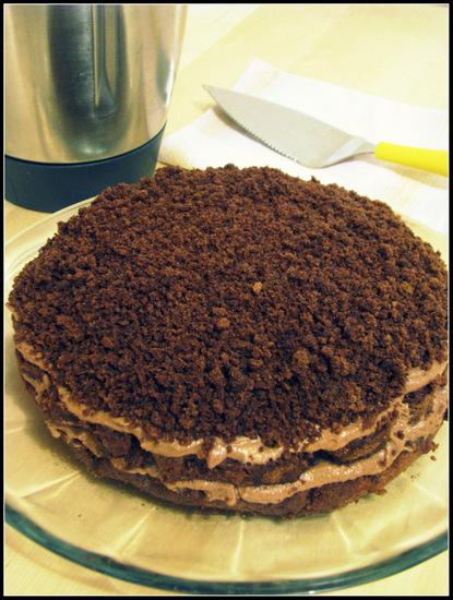 Chocolate Mimosa Cake
