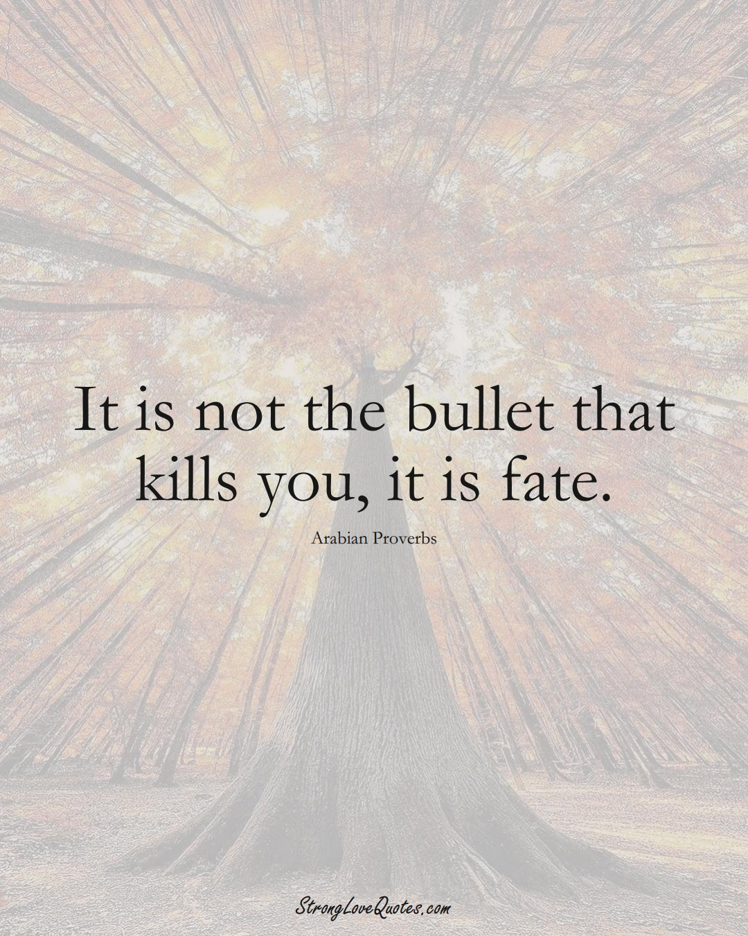 It is not the bullet that kills you, it is fate. (Arabian Sayings);  #aVarietyofCulturesSayings