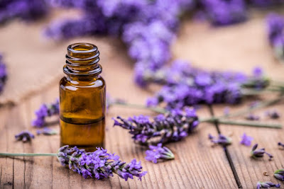 Health Benefits Of Lavender Oil & Tea For Skin, Hair | Aromatherapy