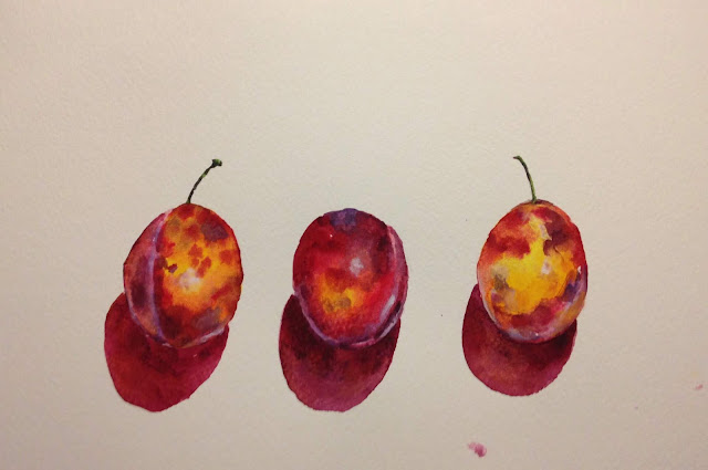 Thursday, 23rd August 2018 - Alan's Plums Watercolour Painting
