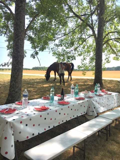 picnic at a riding holiday in France