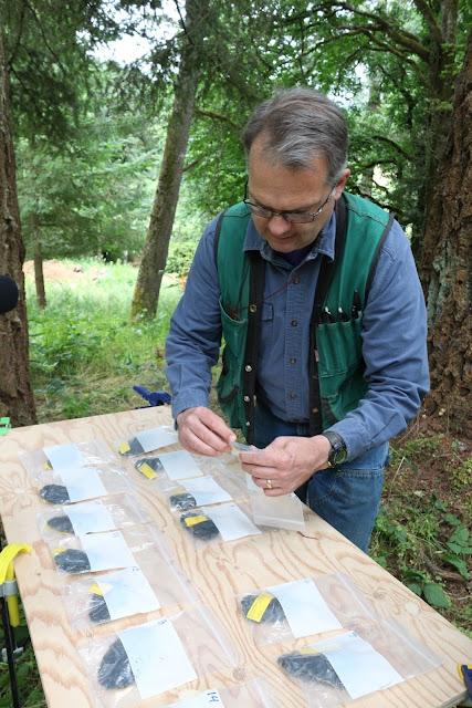 Cache of Native American obsidian tools found in Oregon's Willamette Valley