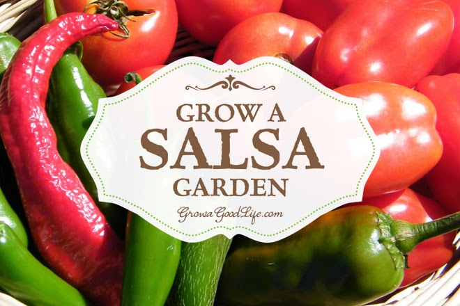 Country Fair Blog Party - Grow a Salsa Garden