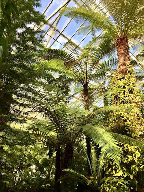 Glasshouses at the Royal Botanic Gardens Edinburgh