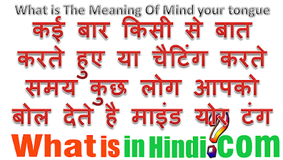 What is the meaning of Mind Your Tongue in Hindi