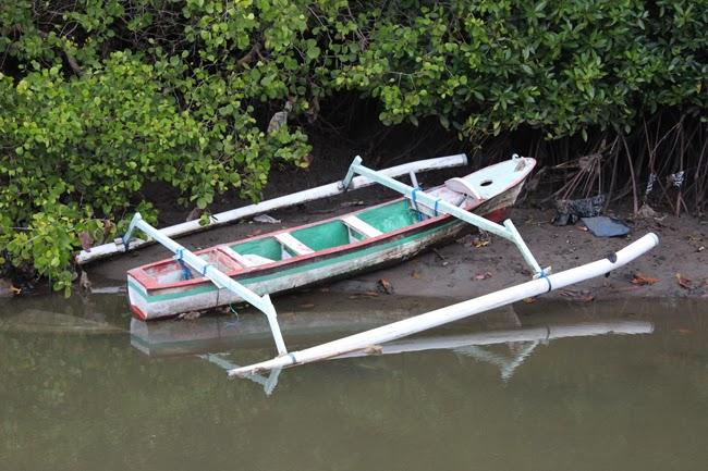 La barca de los manglares