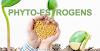 Phytoestrogen và khả năng giảm cơn bốc hoả thời kỳ tiền mãn kinh, mãn kinh