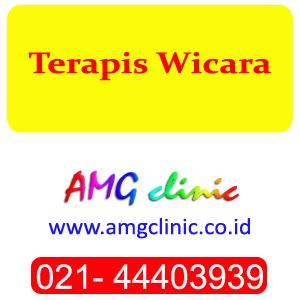 Terapis Wicara