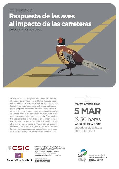 Conferencia: Respuesta de las aves al impacto de las carreteras. Por Juan D. Delgado García, 5 de Marzo 2019. Grupo Local SEO-Sevilla.