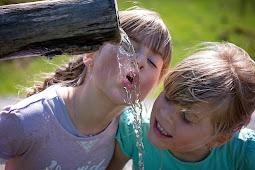Inilah Alasan Mengapa kita perlu minum banyak air