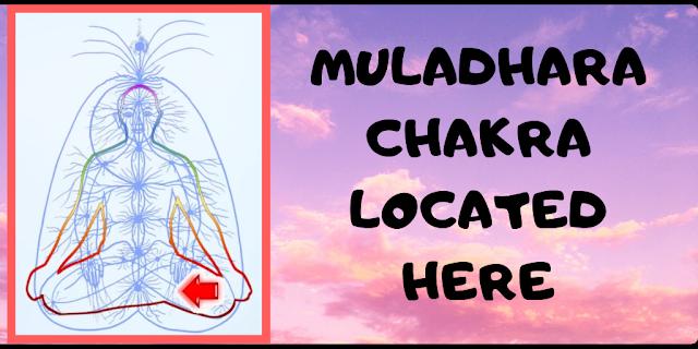 muladhara chakra located