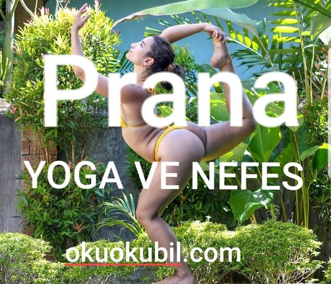 Yoga ve Nefes ( Prana )