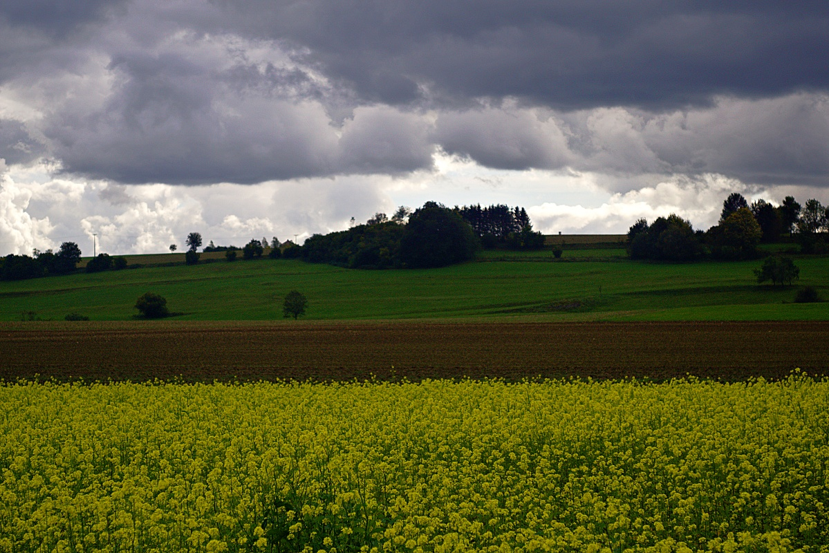 #185 Color-Magnolar II f4.5 60mm – Wolkenstrukturen
