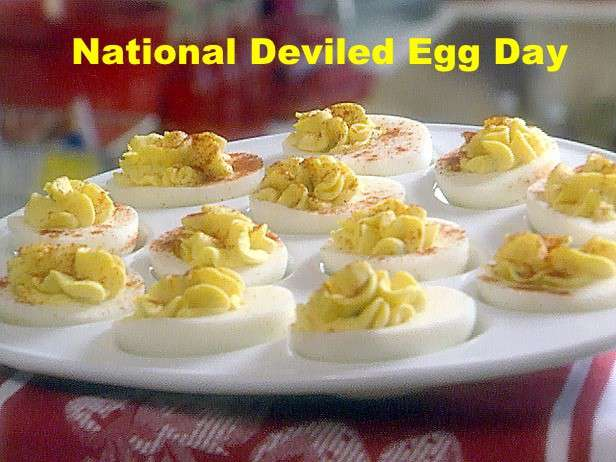National Deviled Egg Day Wishes Images