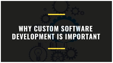 Why is custom software development important