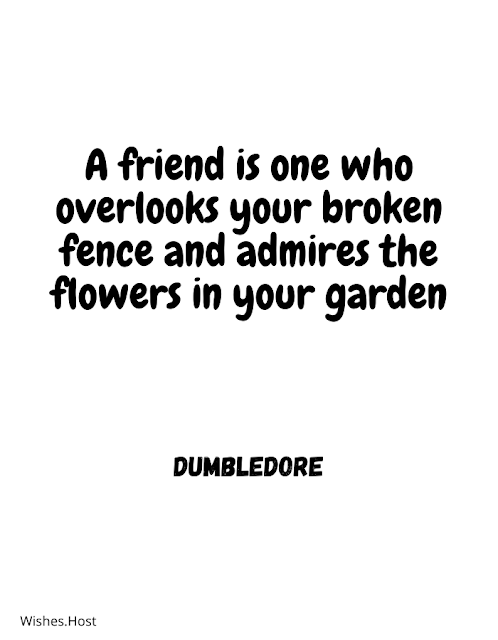 True Friend Friendship Quotes