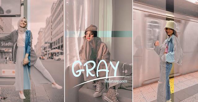preset lightroom gray