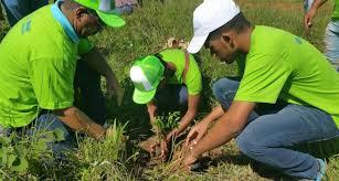 Hoy celebramos el Día Mundial del Medio Ambiente